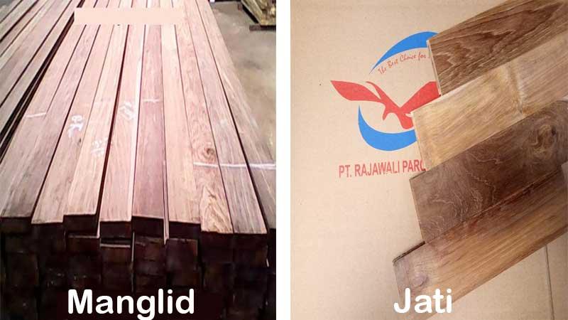 perbedaan kayu manglid dan jati