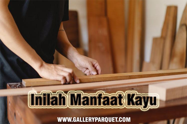 Manfaat kayu untuk furniture dan kontruksi