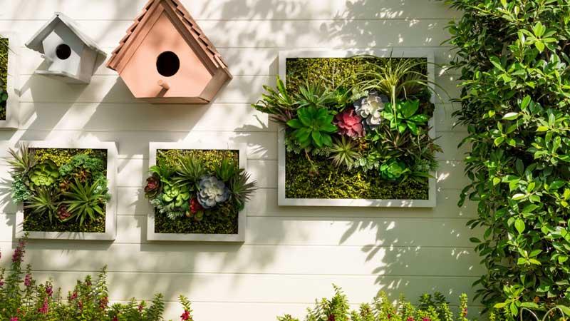 desain tanaman pada dinding depan rumah minimalis